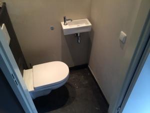 Toilet renovatie Kasteel Horionstraat 6